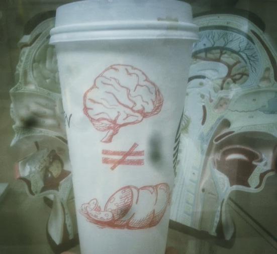 brainnotbalogney