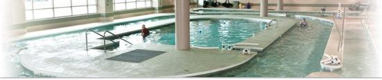 turttle pool