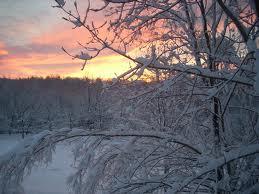snowyrise1