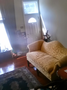 Golden couch wants you to sit!